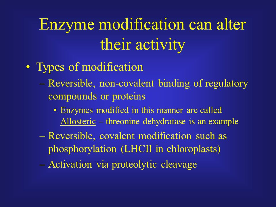 what is enzyme activity pdf