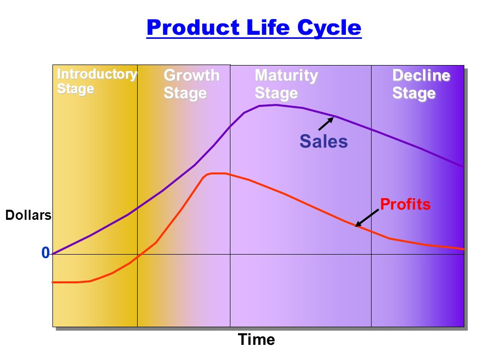 product life cycles The product life cycle (plc) lesson exercise answer the product life cycle (plc) is based upon the biological life cycle for example, a seed is planted (introduction) it begins to sprout (growth) it shoots out leaves and puts down roots as it becomes an adult (maturity) after a long period as an adult the plant begins to shrink and die.