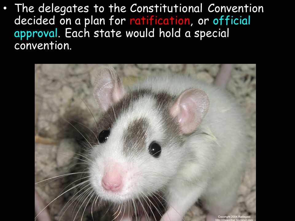 The delegates to the Constitutional Convention decided on a plan for ratification, or official approval.