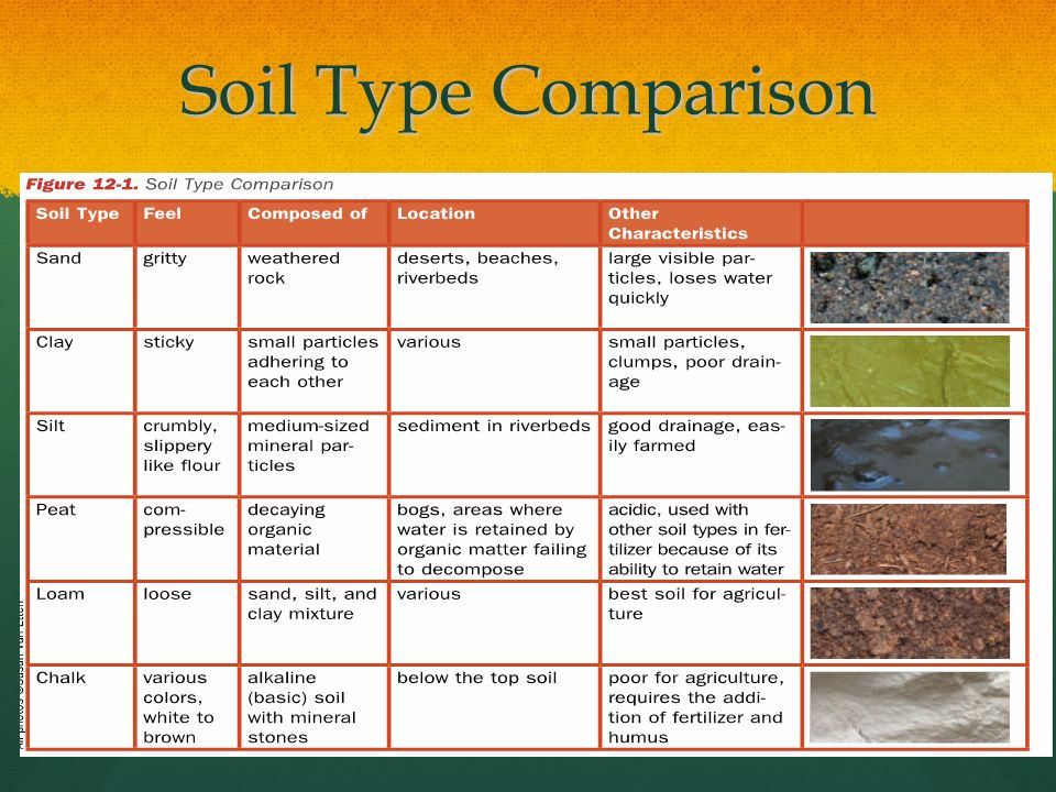 Daw daw do now how can soil evidence be valuable even if for Different types of soil for kids