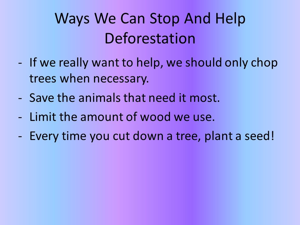 Is deforestation a problem by mikayla and asha ppt for What do we use trees for