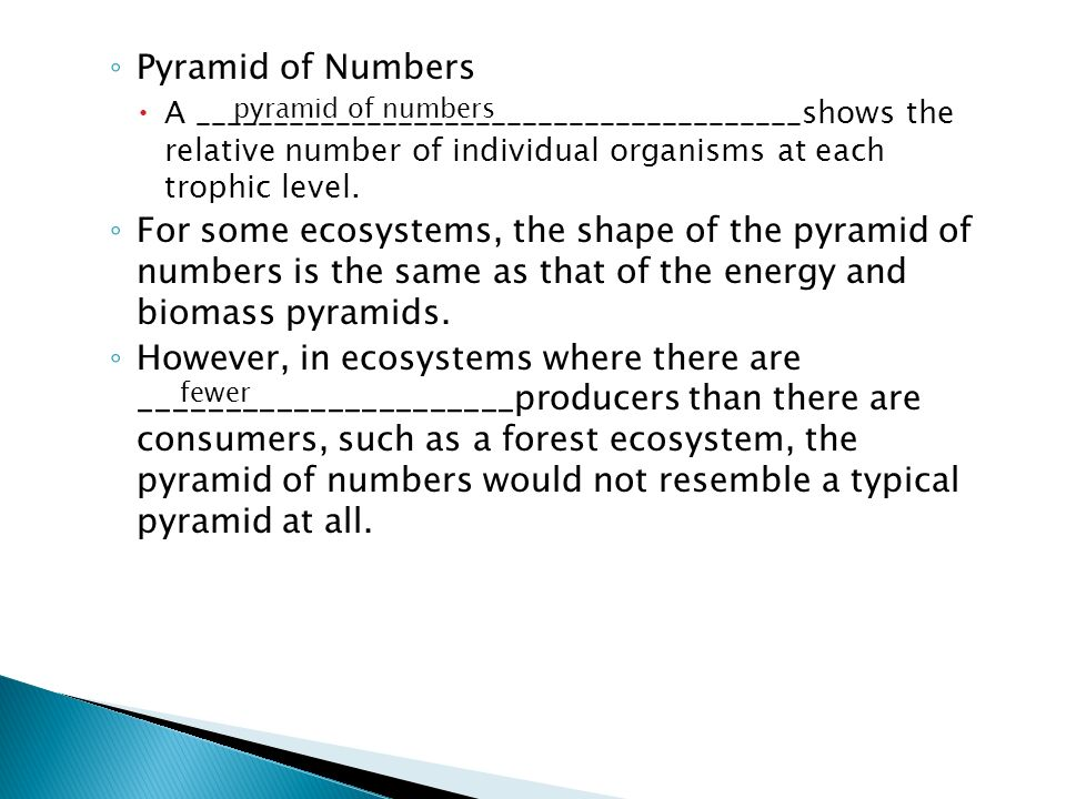 Pyramid of Numbers A _______________________________________shows the relative number of individual organisms at each trophic level.