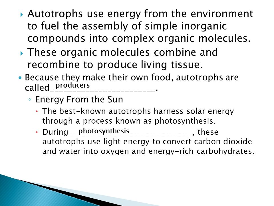 Autotrophs use energy from the environment to fuel the assembly of simple inorganic compounds into complex organic molecules.