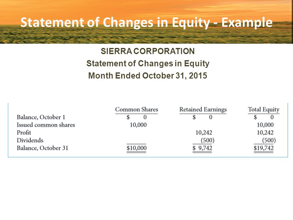 statement of changes in stockholders equity for lee corporation Acct 19743 acct 19743 the platte corporation issues a 5-year note the 2016 statement of changes in stockholders' equity would not be affected because the.