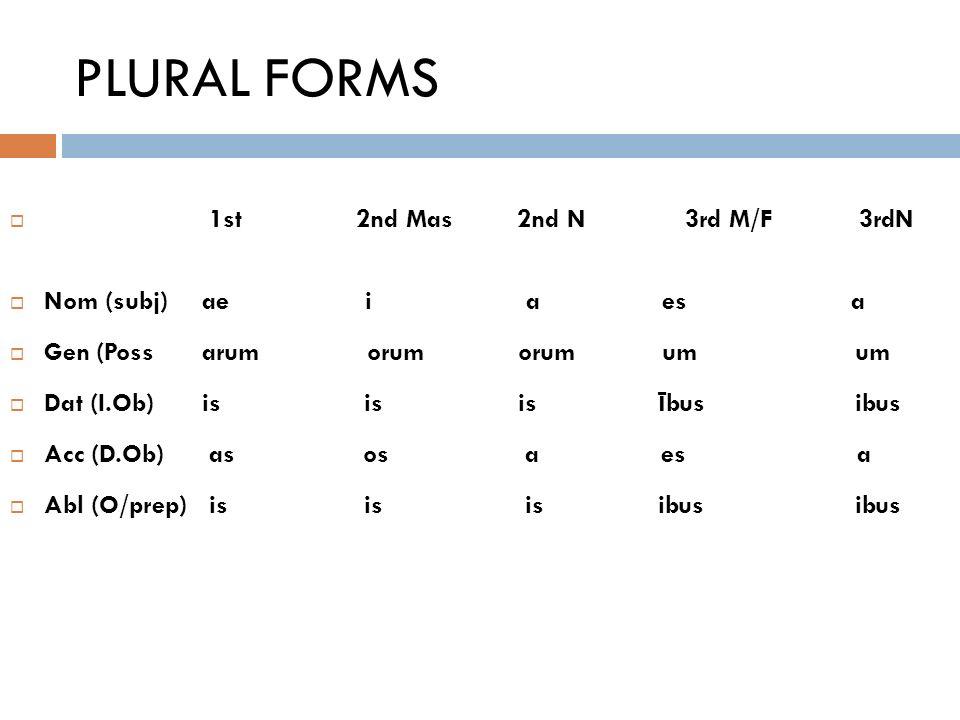 study guide ibus