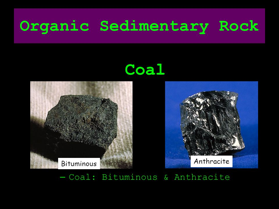 Sedimentary, Igneous, and Metamorphic - ppt download