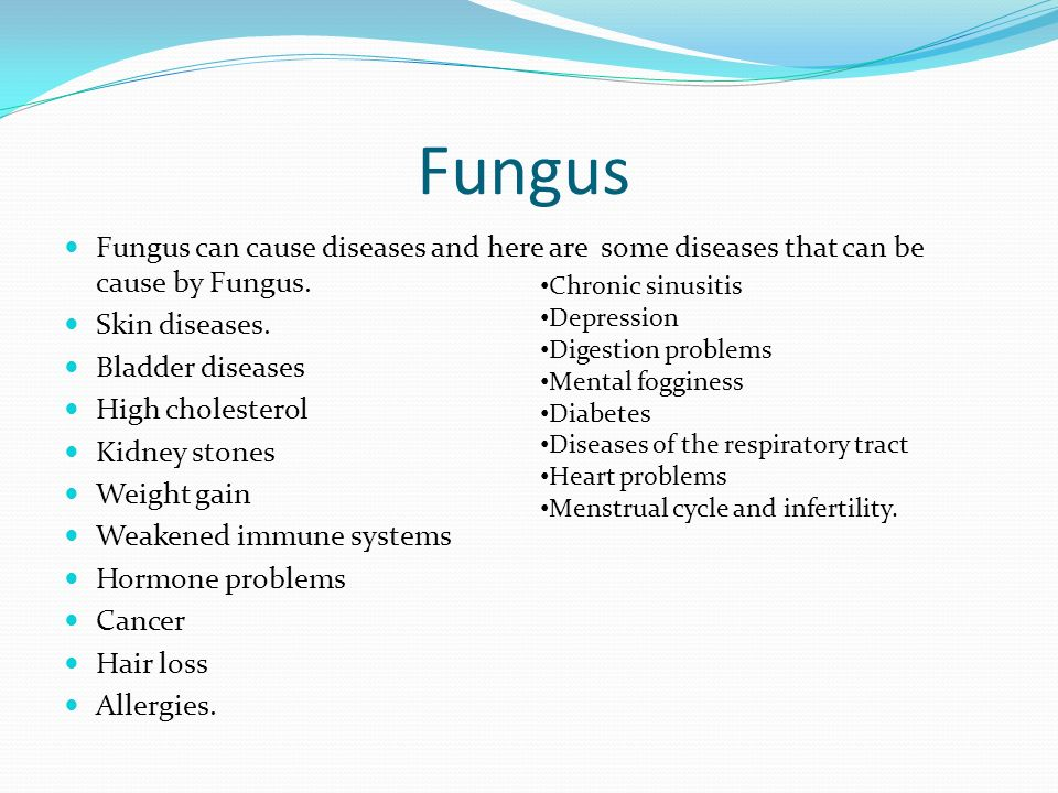 How Do Fungi And Bacteria Cause Diseases Ppt Video