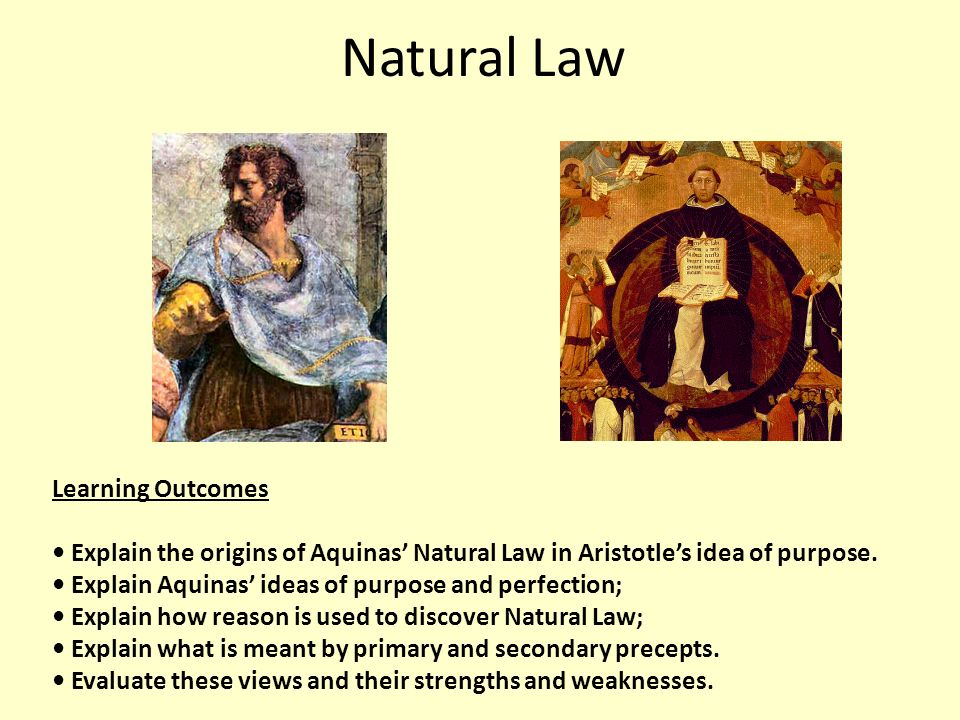 explain the theory of natural law Natural law theory in order to examine the extent of aristotle's influence on the natural law theory of with natural law theory in book v of nicomanchean.