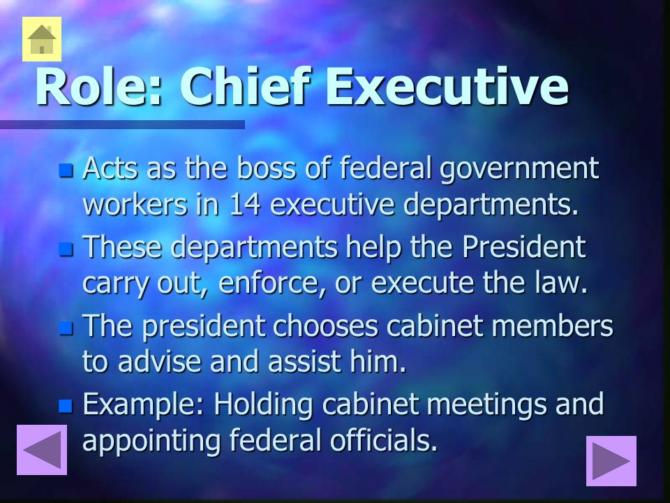 The Roles of the President - ppt video online download