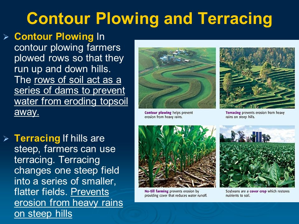 Weathering and Soil Formation - ppt download