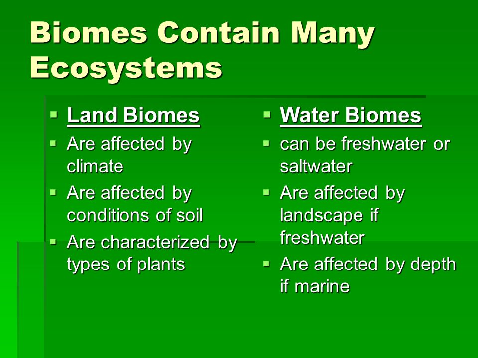 Biomes Contain Many Ecosystems