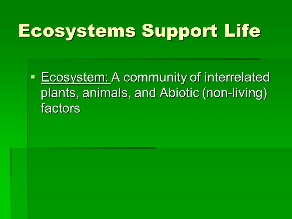 Ecosystems Support Life