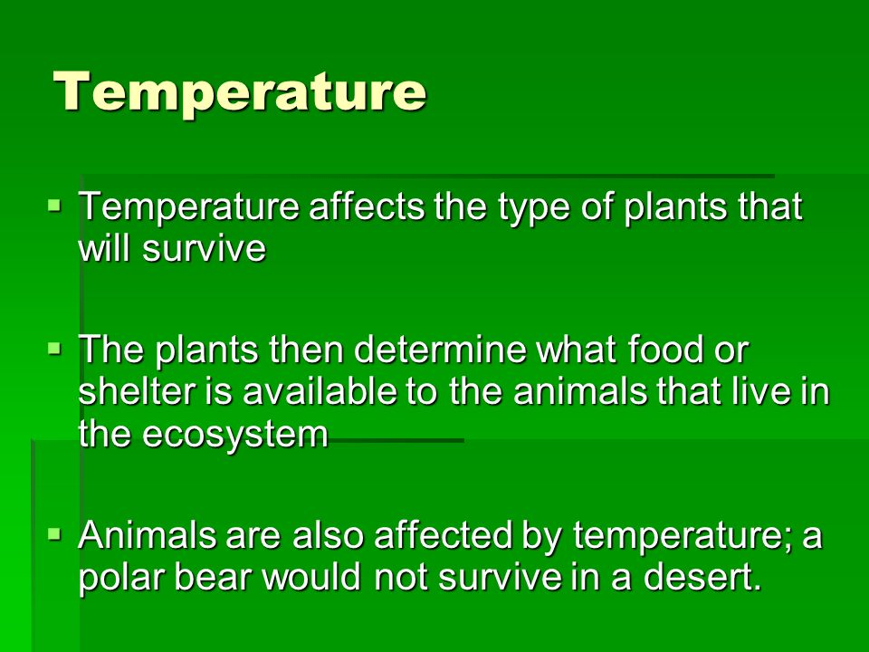 Temperature Temperature affects the type of plants that will survive