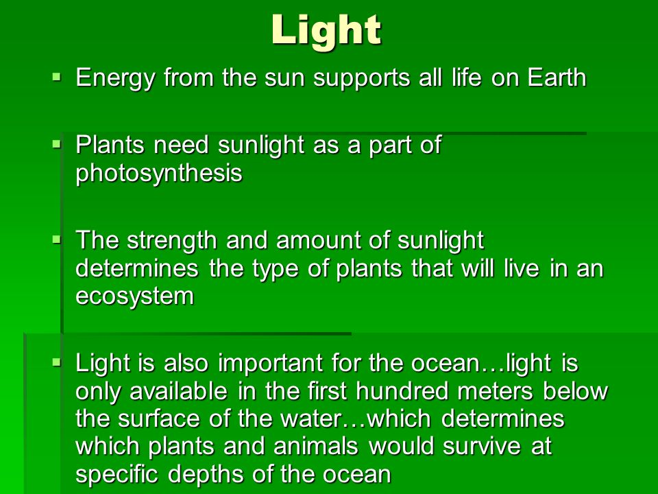 Light Energy from the sun supports all life on Earth