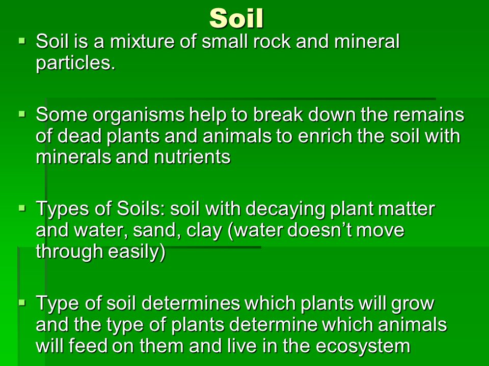 Soil Soil is a mixture of small rock and mineral particles.