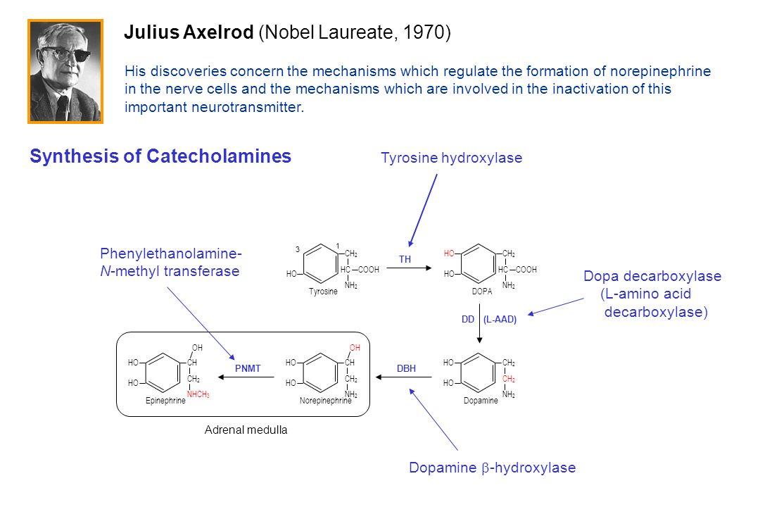 Julius Axelrod (Nobel Laureate, 1970)