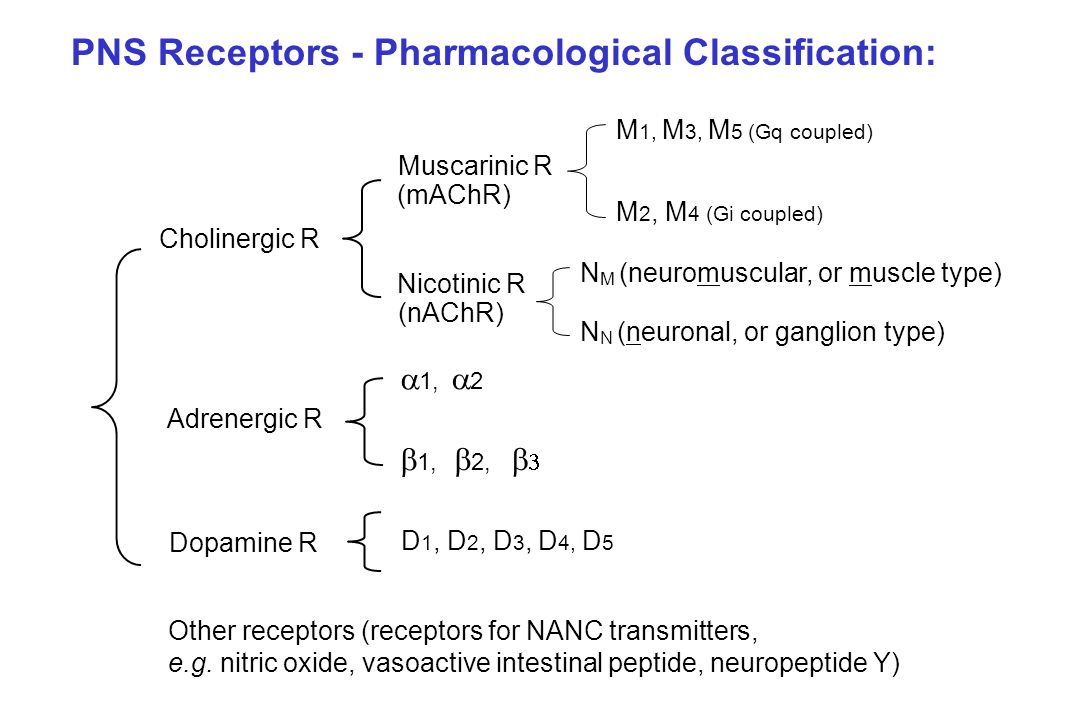 PNS Receptors - Pharmacological Classification: