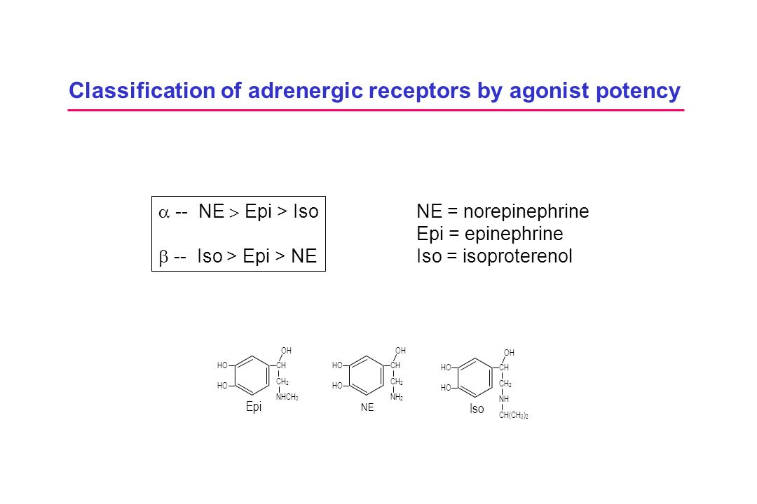 Classification of adrenergic receptors by agonist potency