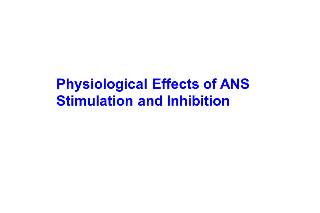 Physiological Effects of ANS