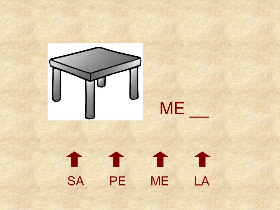 ME __ SA PE ME LA