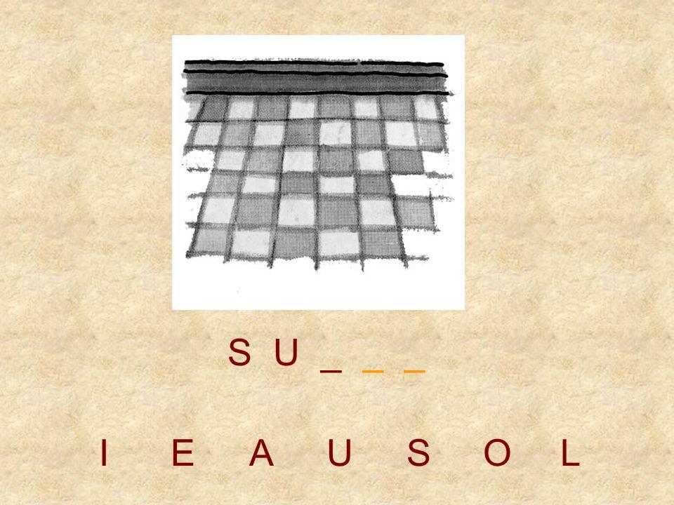 S U _ _ _ I E A U S O L