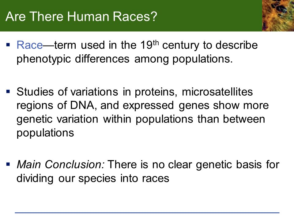 genetic relationship and evolution of human races