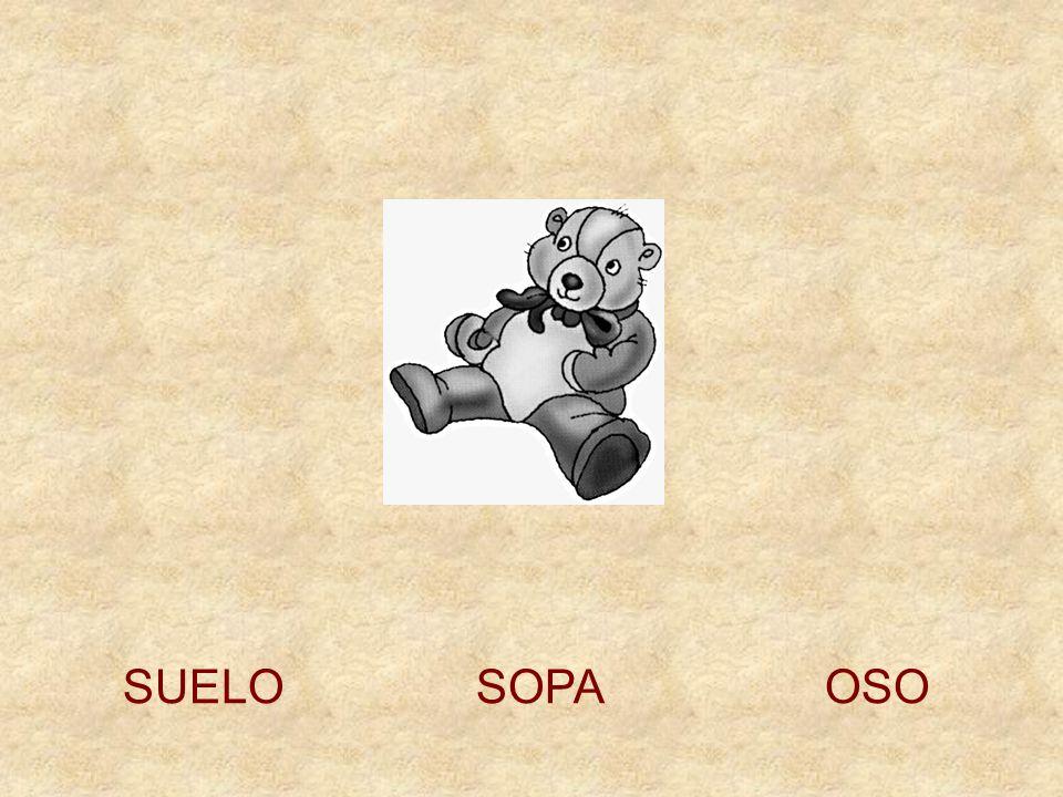 SUELO SOPA OSO