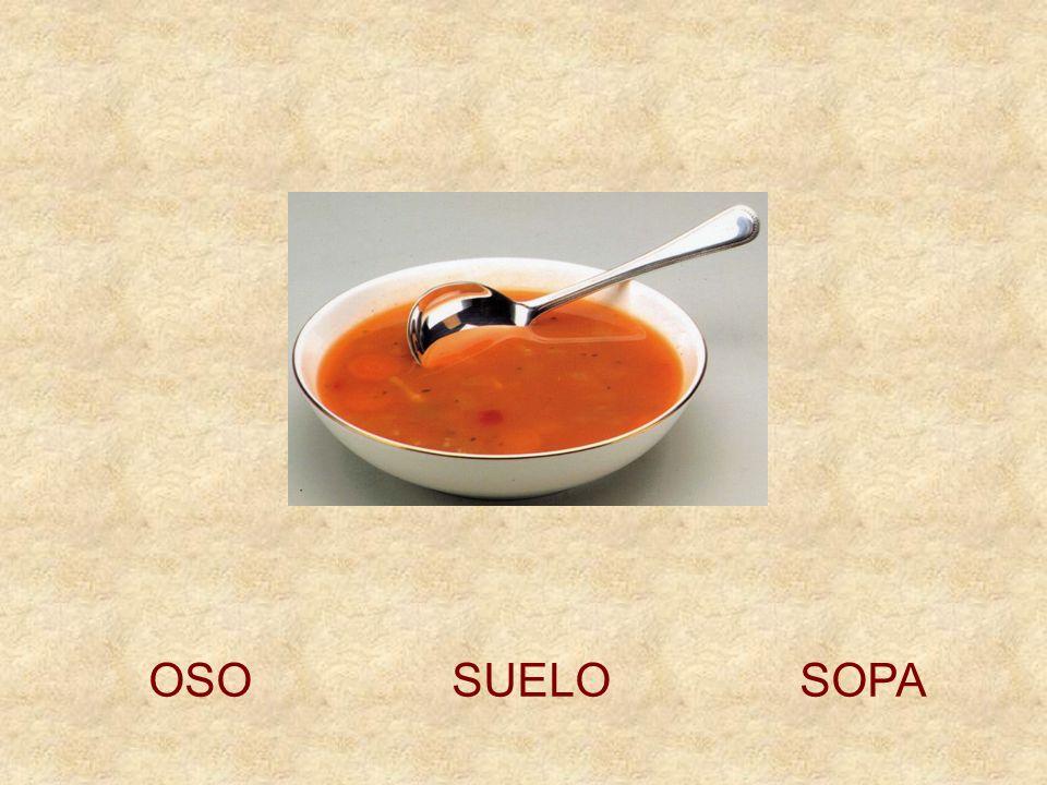 OSO SUELO SOPA