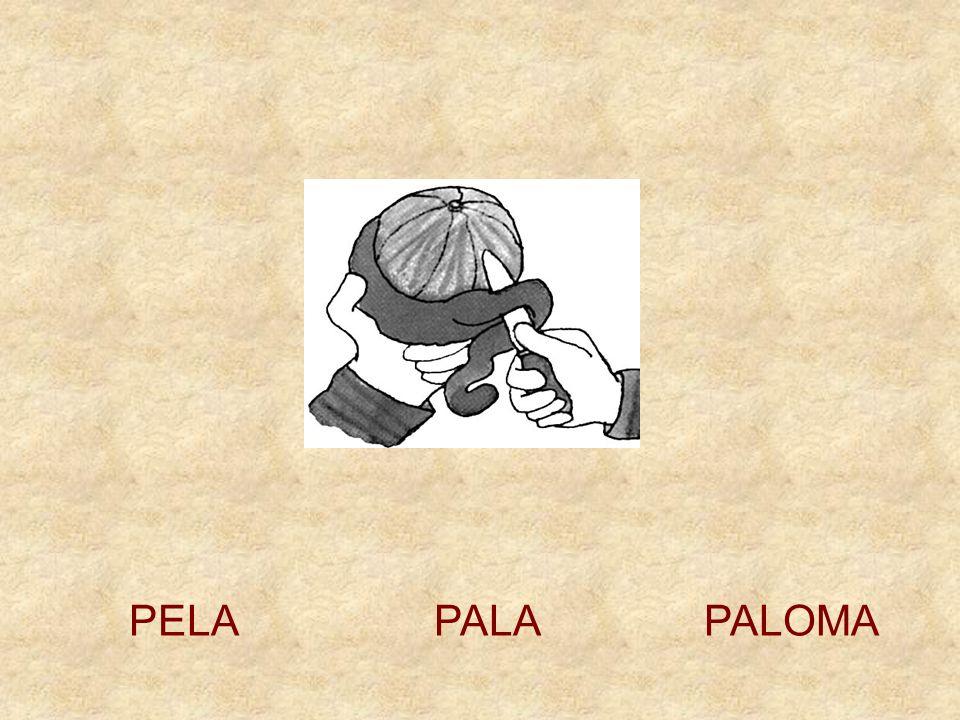 PELA PALA PALOMA
