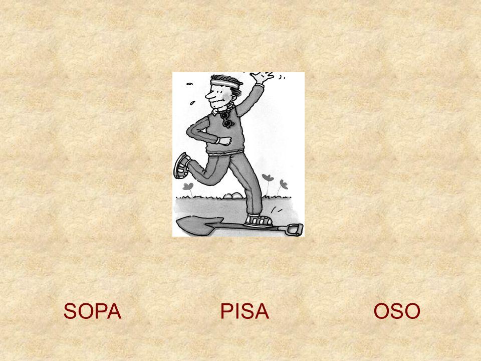 SOPA PISA OSO