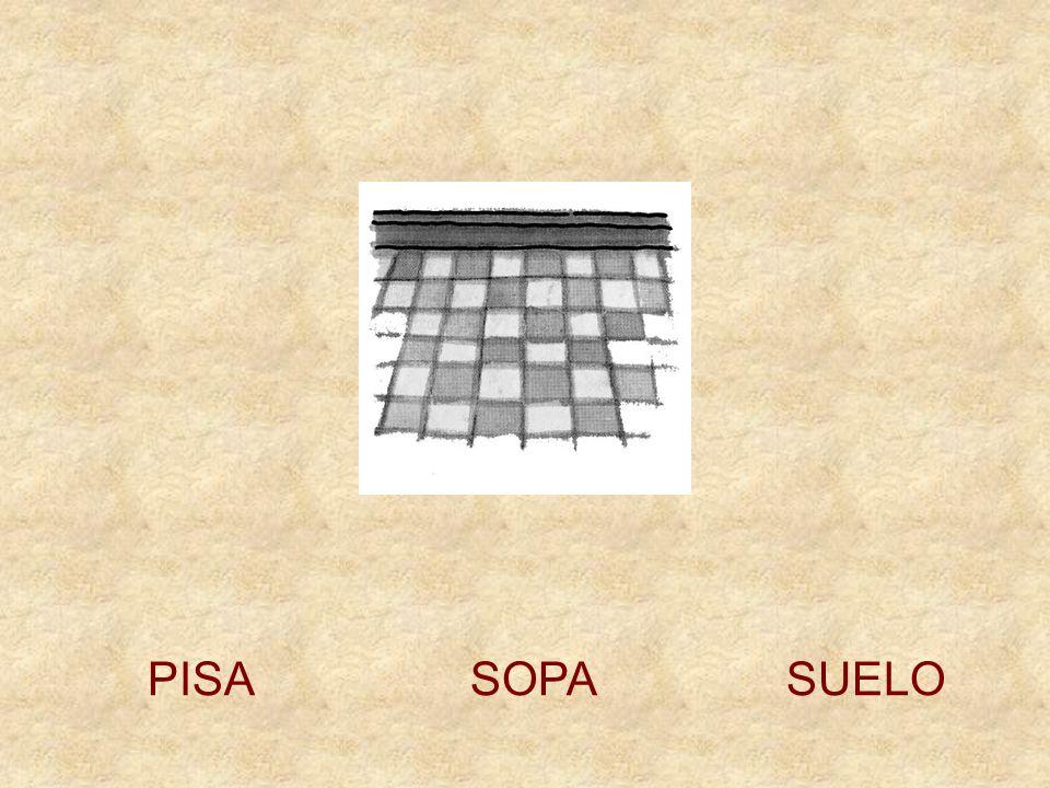 PISA SOPA SUELO