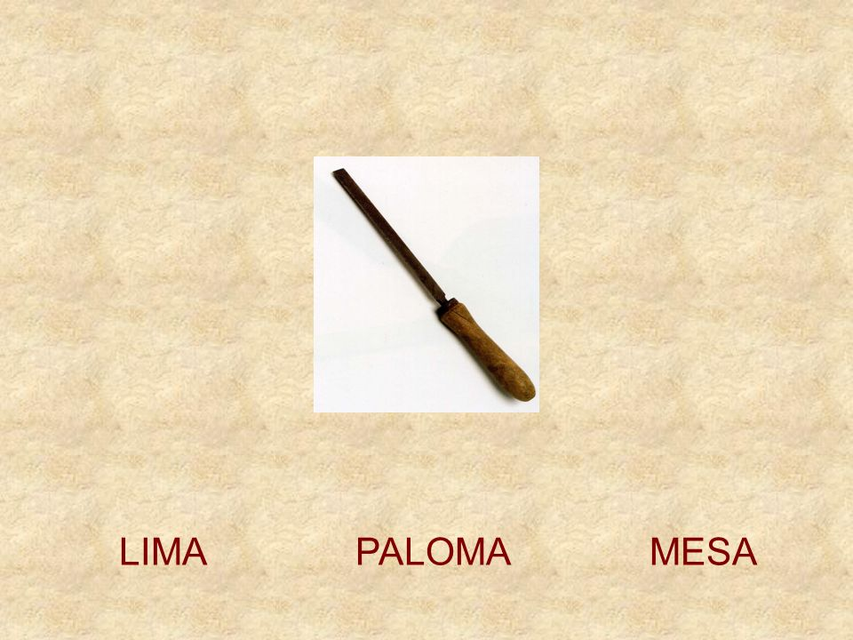 LIMA PALOMA MESA