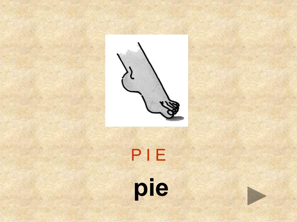 P I E pie