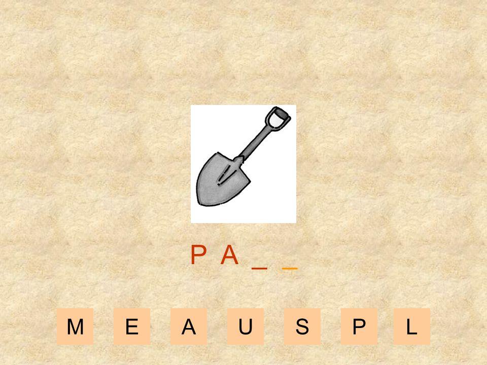 P A _ _ M E A U S P L