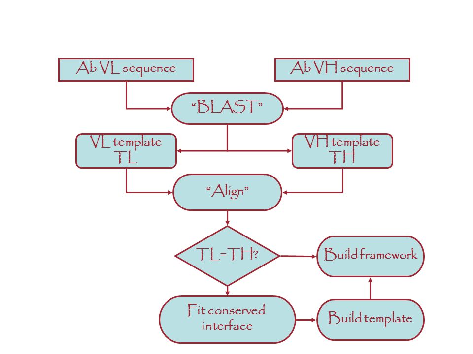 ANTIBODIES: Ab VL sequence Ab VH sequence BLAST VL template TL