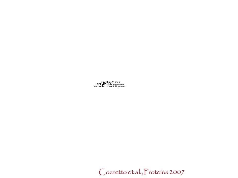 Cozzetto et al., Proteins 2007