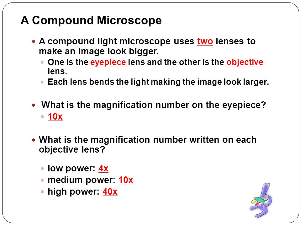 relationship between magnification and amount of illumination