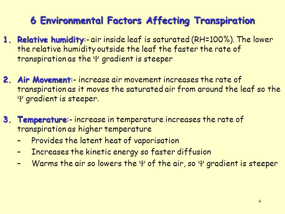rate of transpiration Transpiration is increased as optimal light levels are approached as temperature increases, so does the rate of transpiration, opening the stoma (pores in the epidermis) for gas exchange and water vapor loss.
