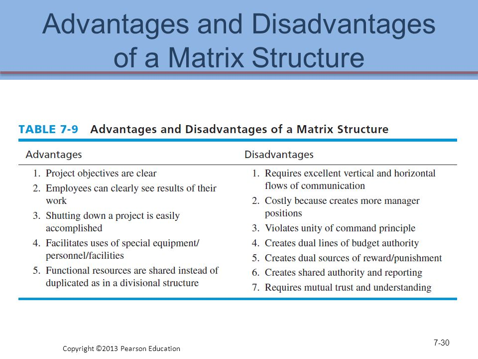 Matrix Organization : The Advantages And The Disadvantages