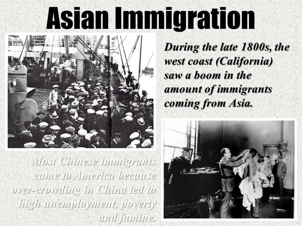 asian immigrants at gold fields and Library of congress teachers once the chinese immigrants arrived in california and the gold fields were littered with disappointed prospectors.