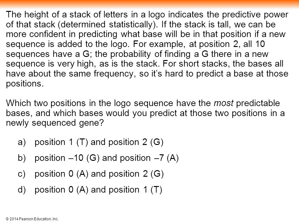 position 1 (T) and position 2 (G) position –10 (G) and position –7 (A)