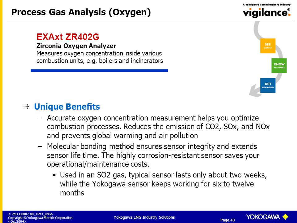 Process Gas Analysis (Oxygen)