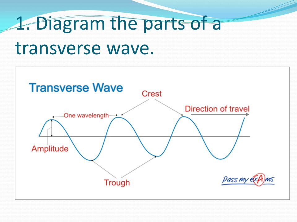 Draw And Label A Transverse Wave Fashionellaconstance