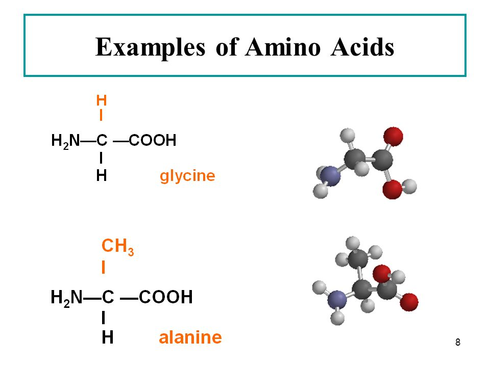 amino acid dating example Amino acid dating is a dating technique used to estimate the age of a specimen in paleobiology, molecular paleontology, archaeology, forensic science, taphonomy.