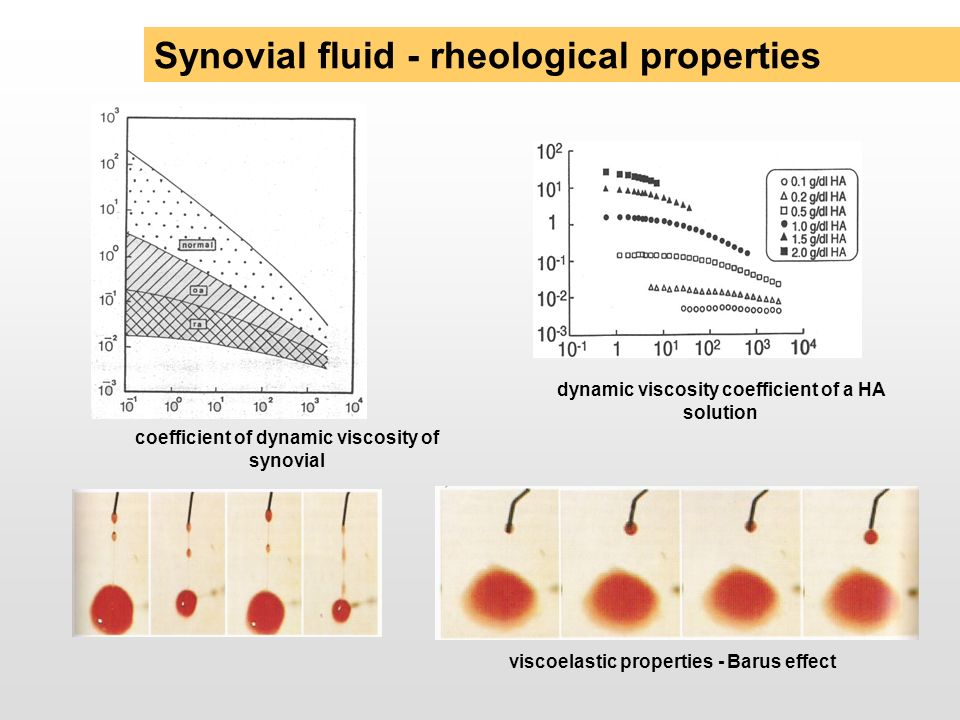 Synovial fluid - rheological properties
