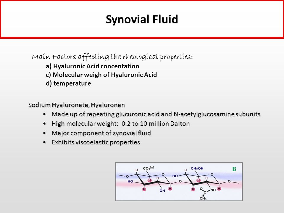 Synovial Fluid Main Factors affecting the rheological properties: