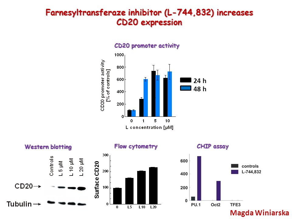 Farnesyltransferaze inhibitor (L-744,832) increases CD20 expression