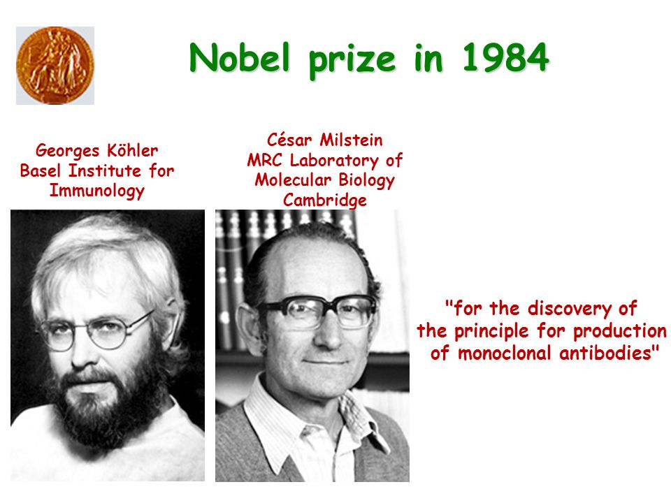 Nobel prize in 1984 for the discovery of the principle for production