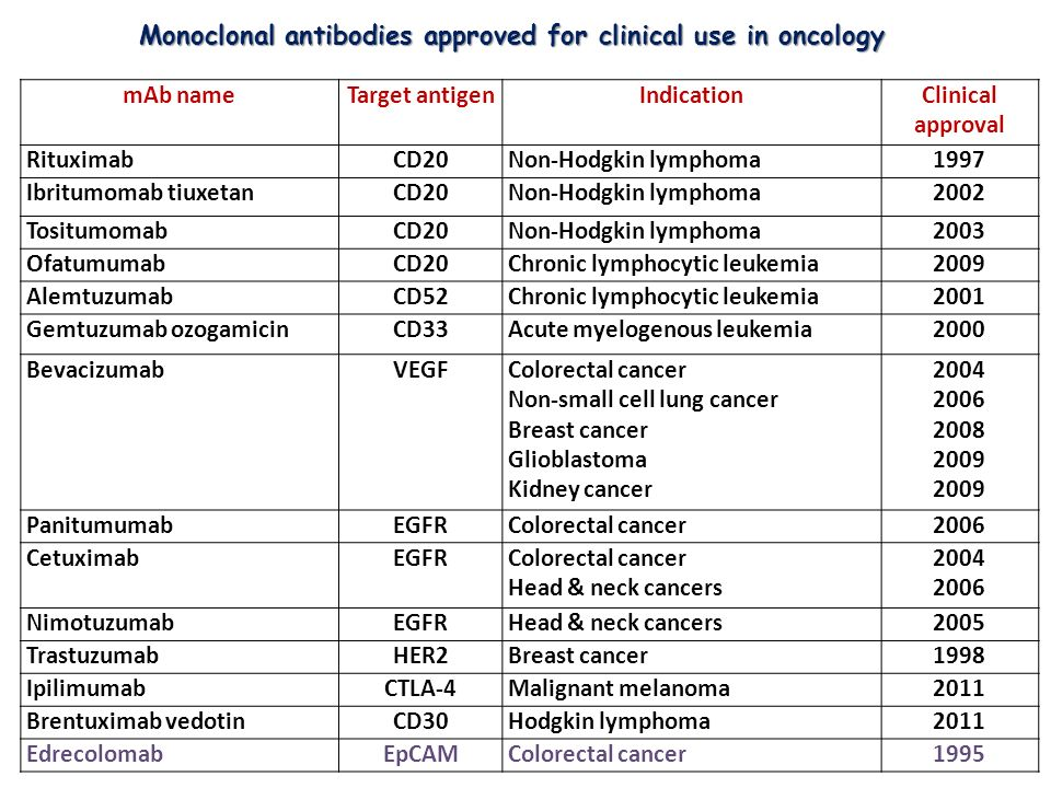 Monoclonal antibodies approved for clinical use in oncology