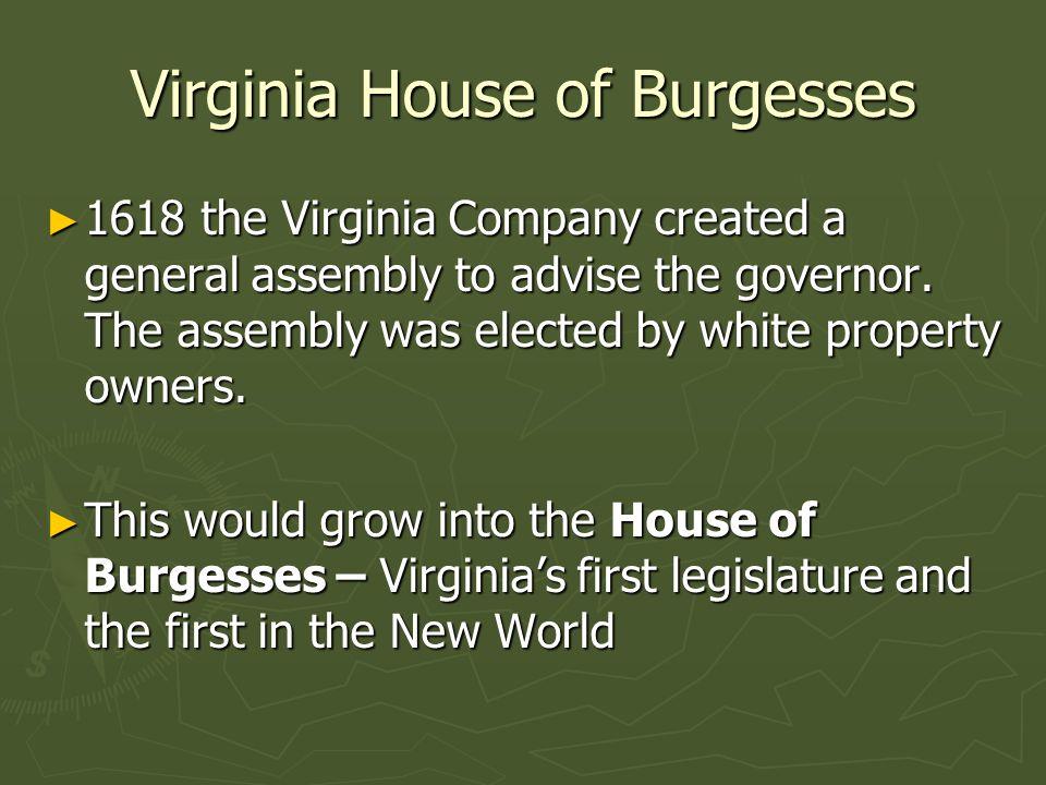 Virginia House Of Burgesses